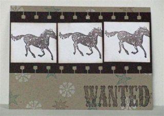 WantedFilmstripMasculine