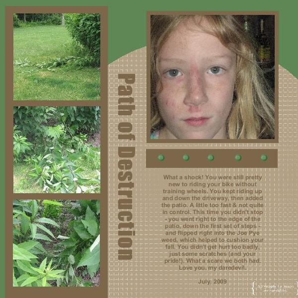 Dana Crash Page-001